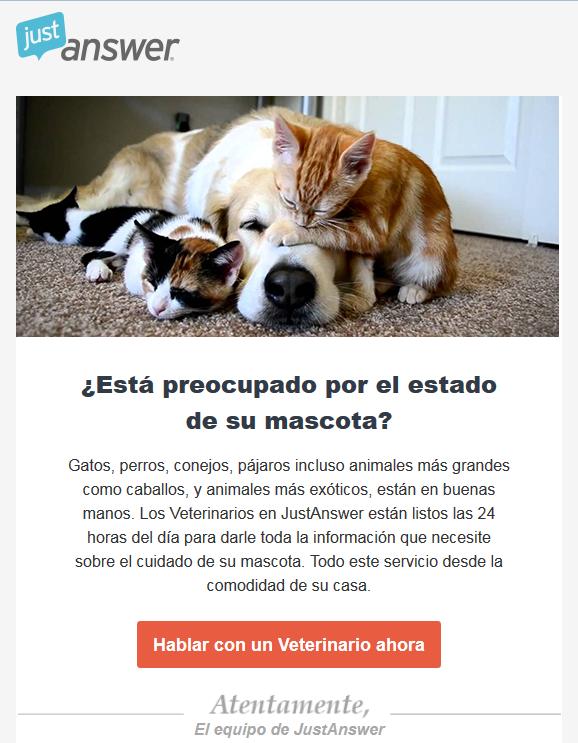 Esta_preocupado_por_el_estado_de_su_mascota